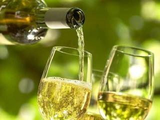 Wein am Main - mit dem JCR